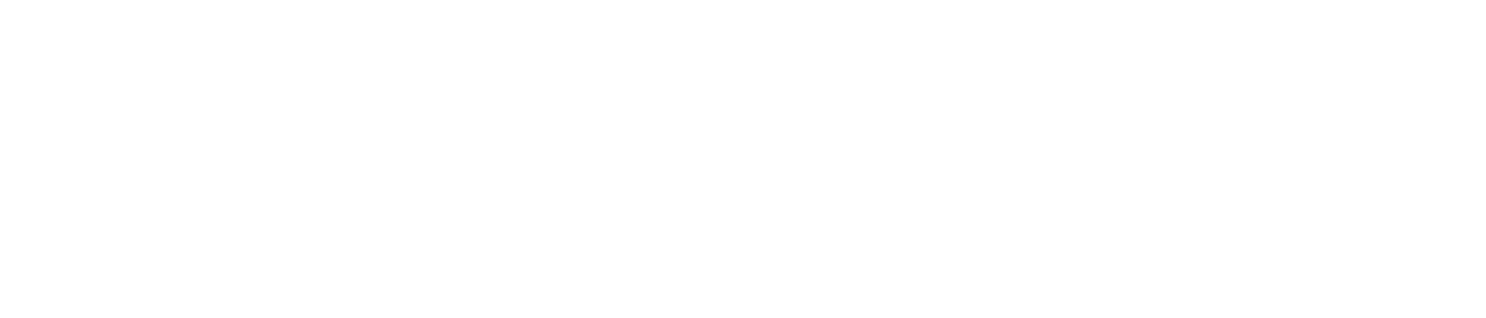 acronis company profile
